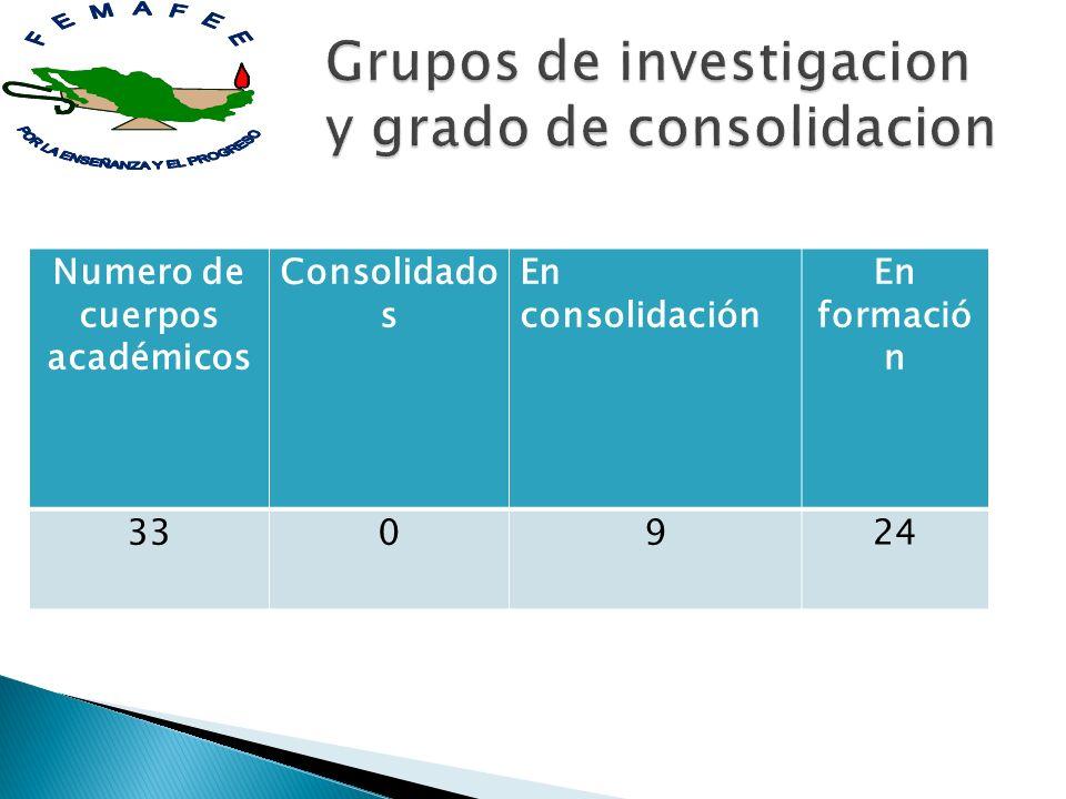 Grupos de investigacion y grado de consolidacion
