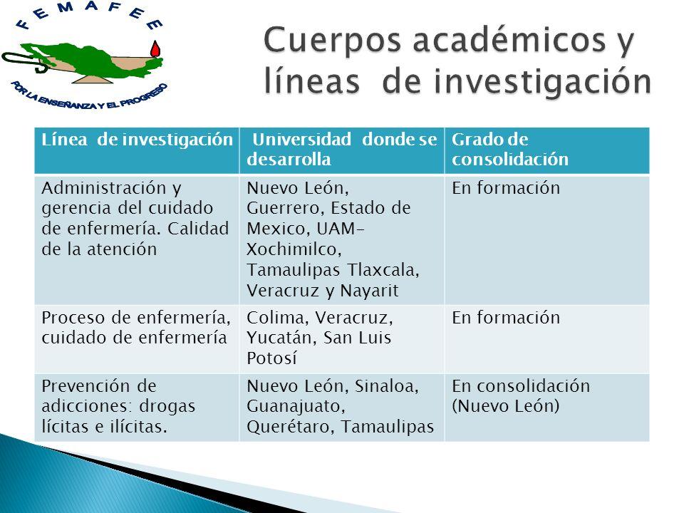 Cuerpos académicos y líneas de investigación