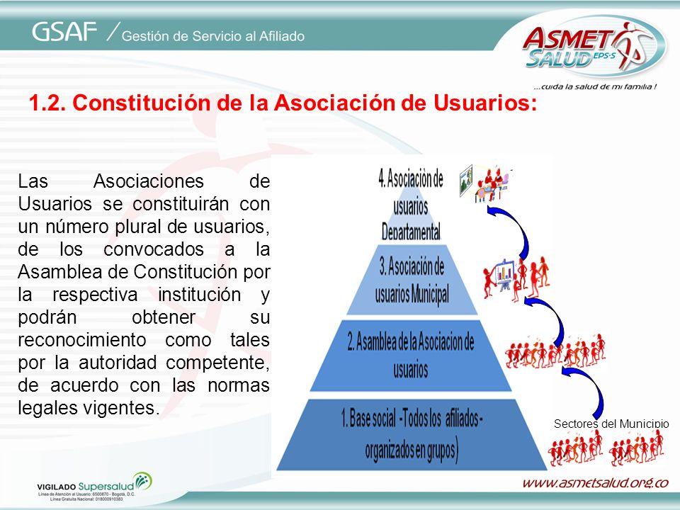 1.2. Constitución de la Asociación de Usuarios: