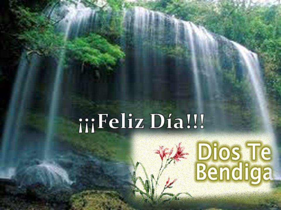 ¡¡¡Feliz Día!!!