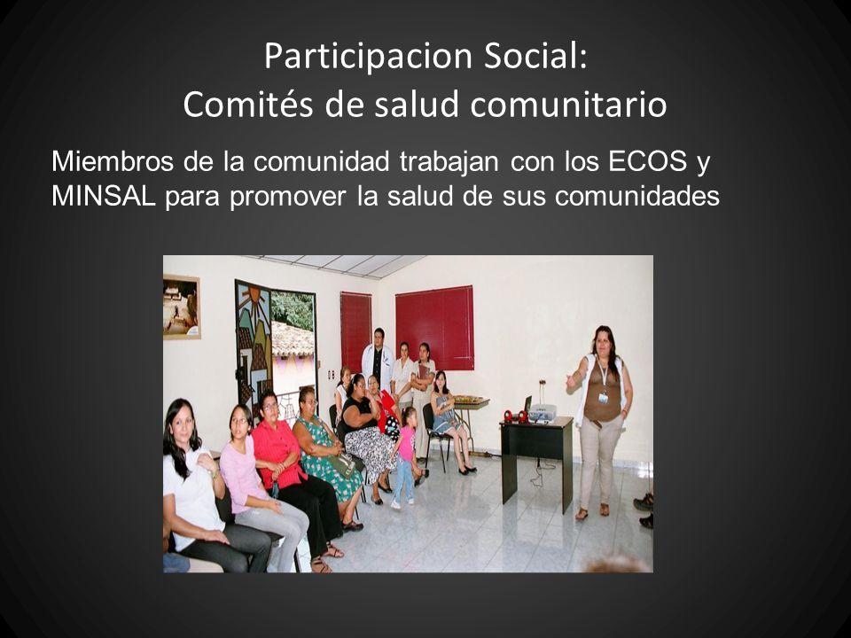 Participacion Social: Comités de salud comunitario