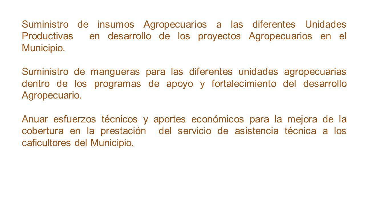 Suministro de insumos Agropecuarios a las diferentes Unidades Productivas en desarrollo de los proyectos Agropecuarios en el Municipio.