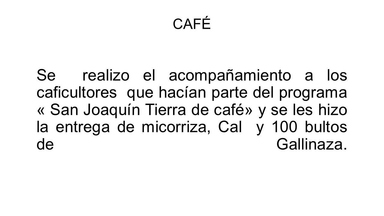 CAFÉ Se realizo el acompañamiento a los caficultores que hacían parte del programa « San Joaquín Tierra de café» y se les hizo la entrega de micorriza, Cal y 100 bultos de Gallinaza.