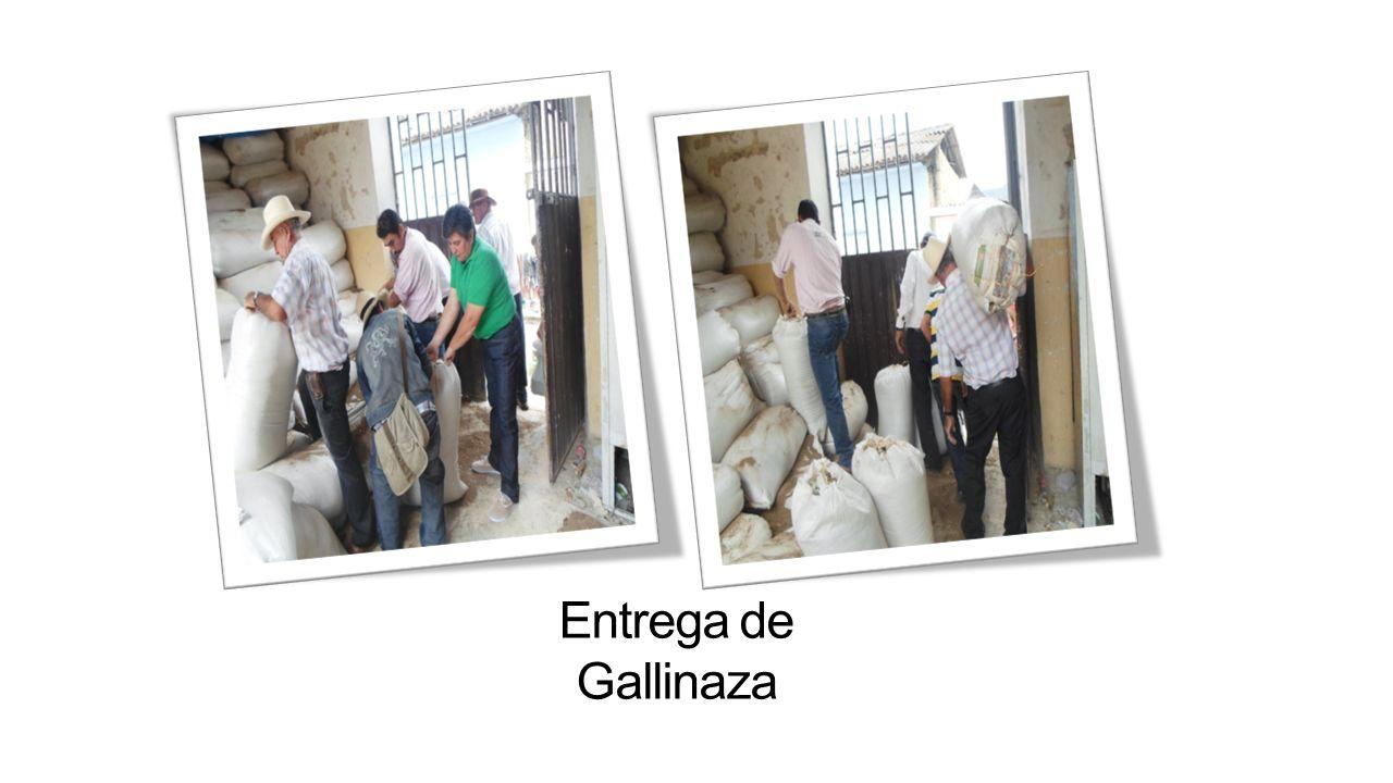 Entrega de Gallinaza