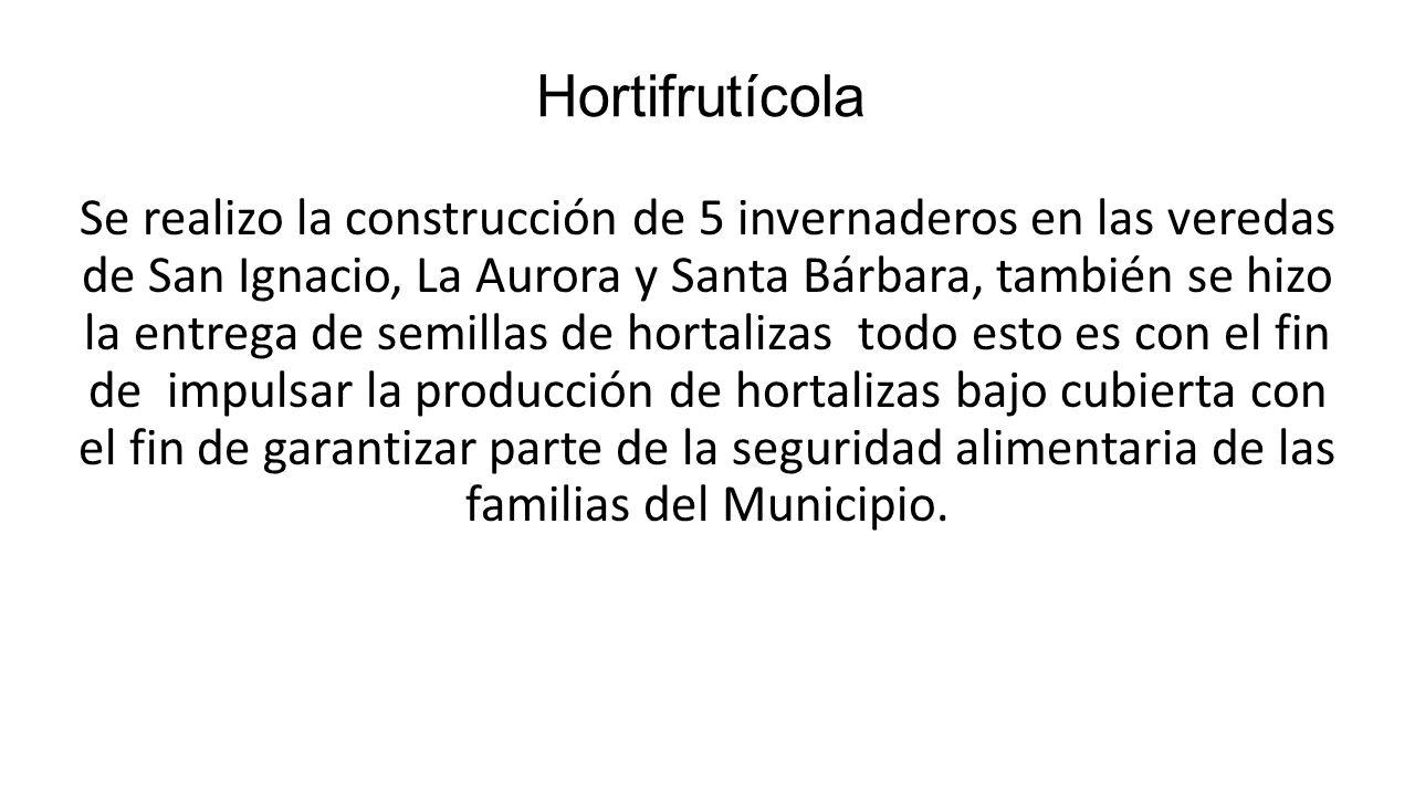 Hortifrutícola