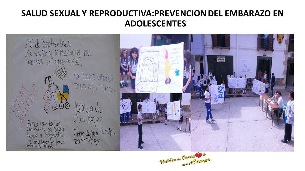 SALUD SEXUAL Y REPRODUCTIVA:PREVENCION DEL EMBARAZO EN ADOLESCENTES