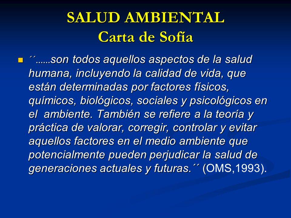 SALUD AMBIENTAL Carta de Sofía
