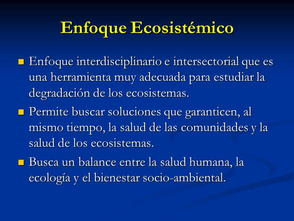 Enfoque Ecosistémico Enfoque interdisciplinario e intersectorial que es una herramienta muy adecuada para estudiar la degradación de los ecosistemas.