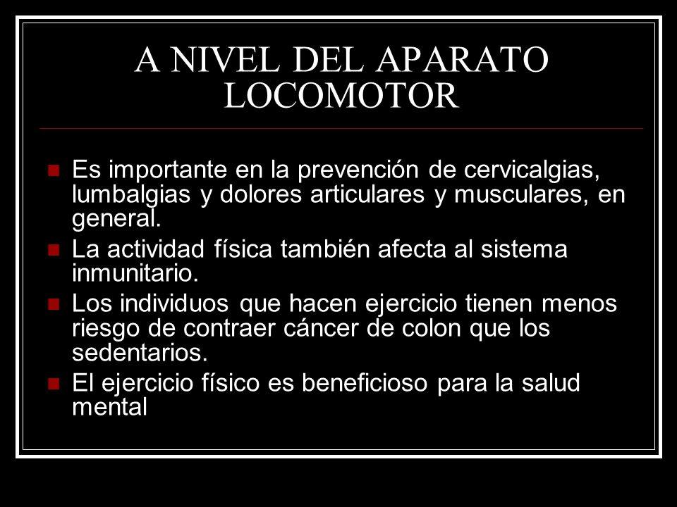 A NIVEL DEL APARATO LOCOMOTOR