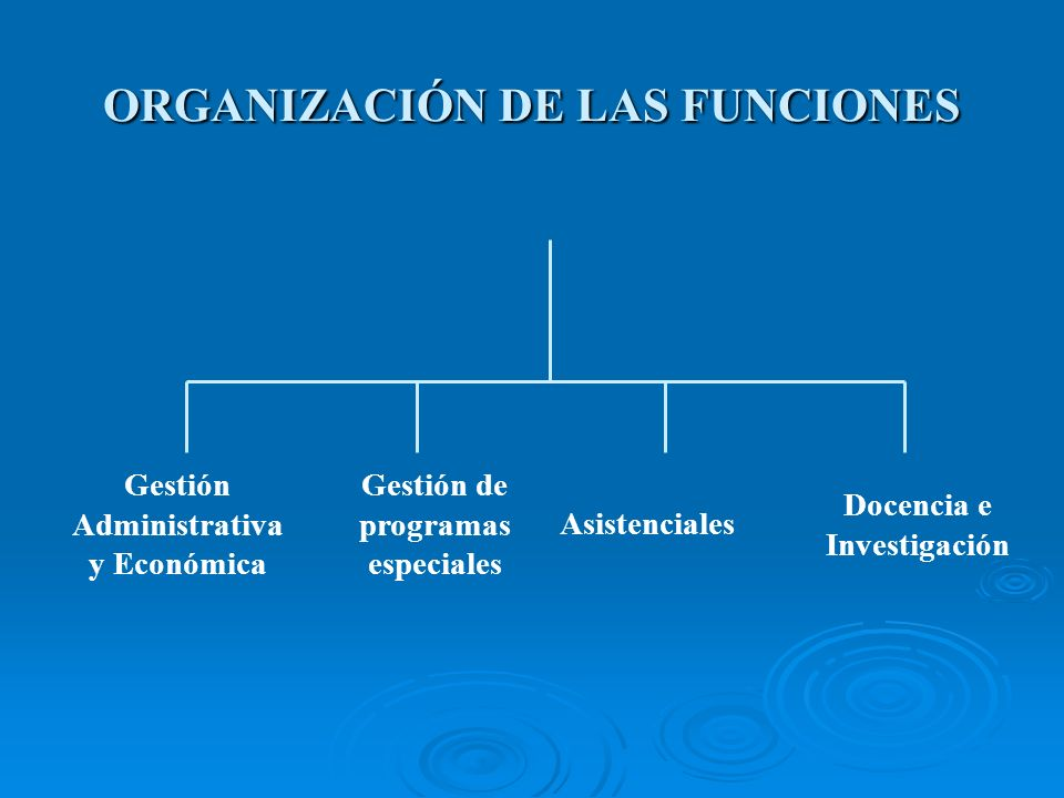 ORGANIZACIÓN DE LAS FUNCIONES