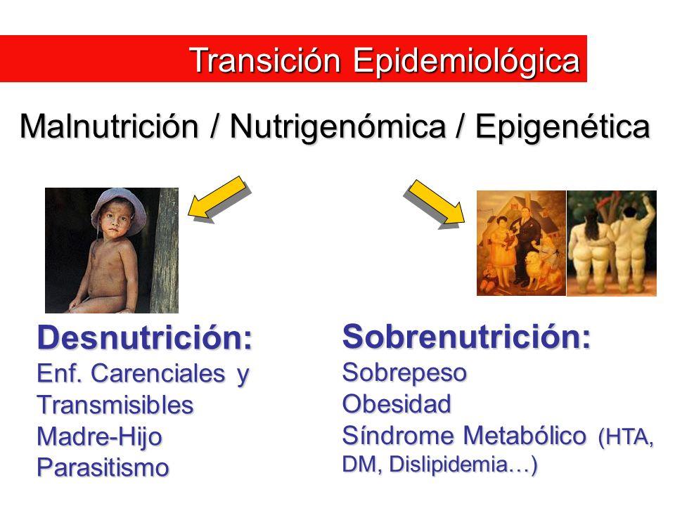 Malnutrición / Nutrigenómica / Epigenética