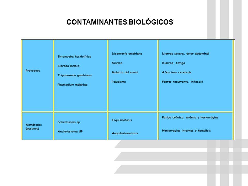 CONTAMINANTES BIOLÓGICOS