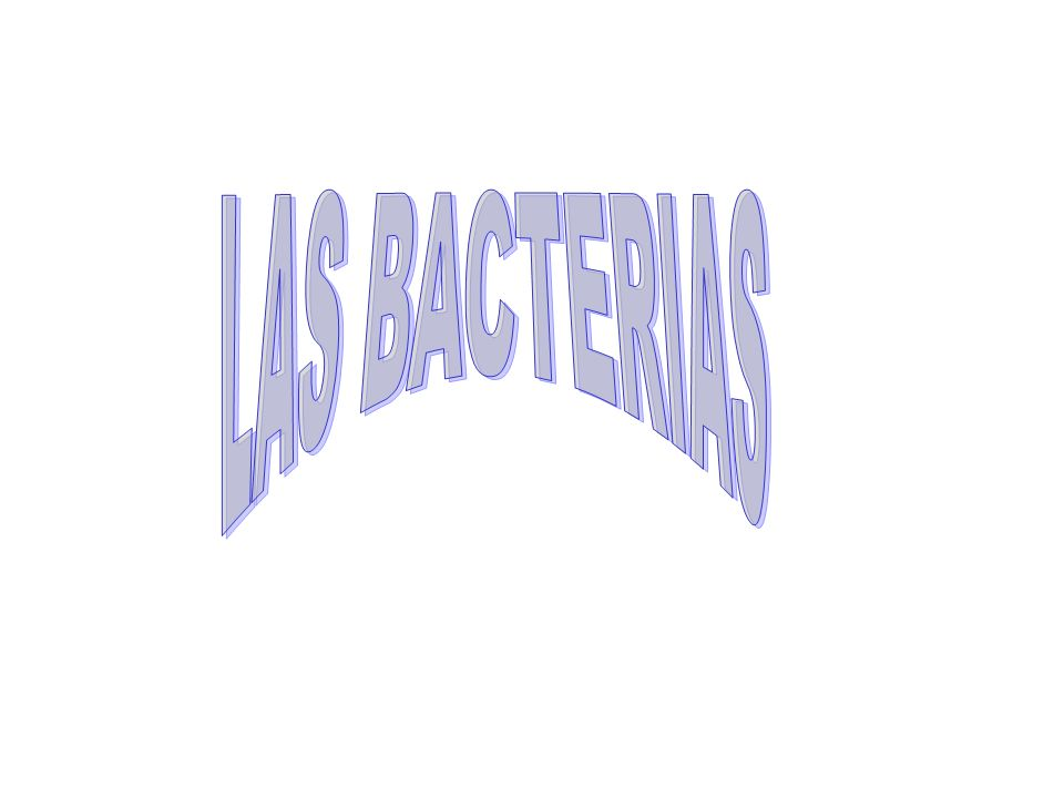 LAS BACTERIAS