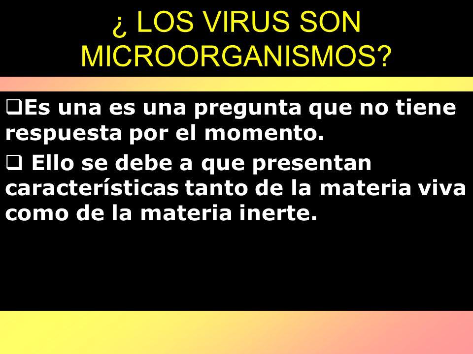 ¿ LOS VIRUS SON MICROORGANISMOS