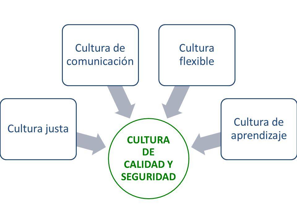 CULTURA DE CALIDAD Y SEGURIDAD