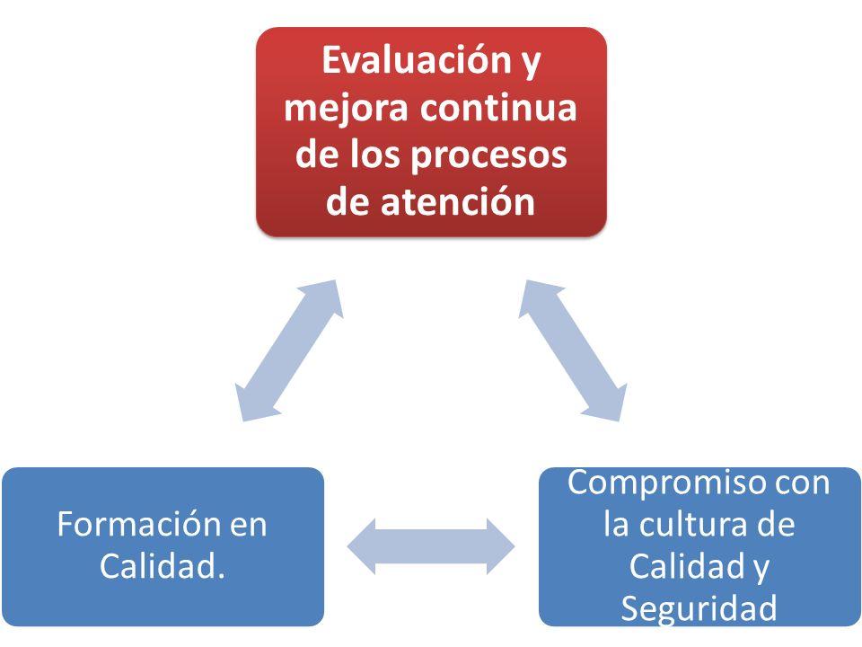 Evaluación y mejora continua de los procesos de atención