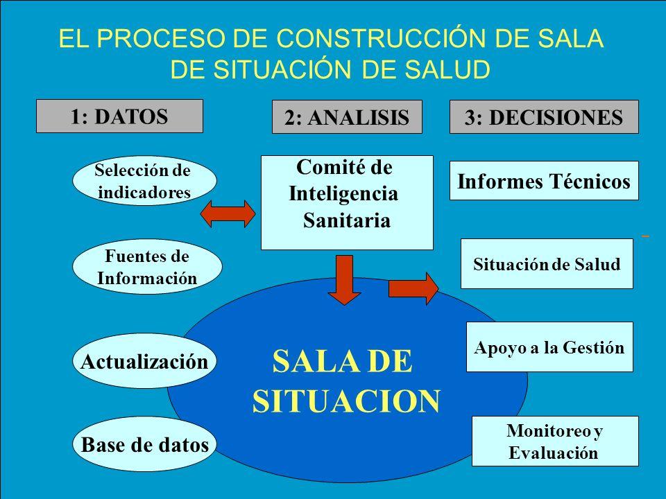 EL PROCESO DE CONSTRUCCIÓN DE SALA DE SITUACIÓN DE SALUD