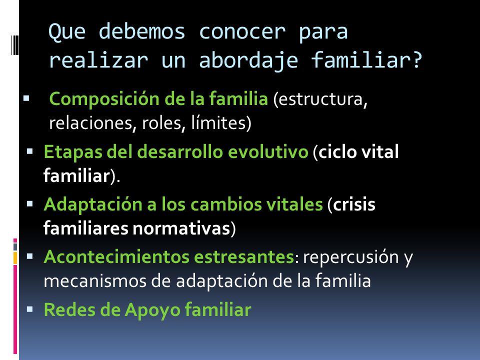 Que debemos conocer para realizar un abordaje familiar