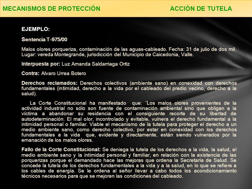 MECANISMOS DE PROTECCIÓN ACCIÓN DE TUTELA