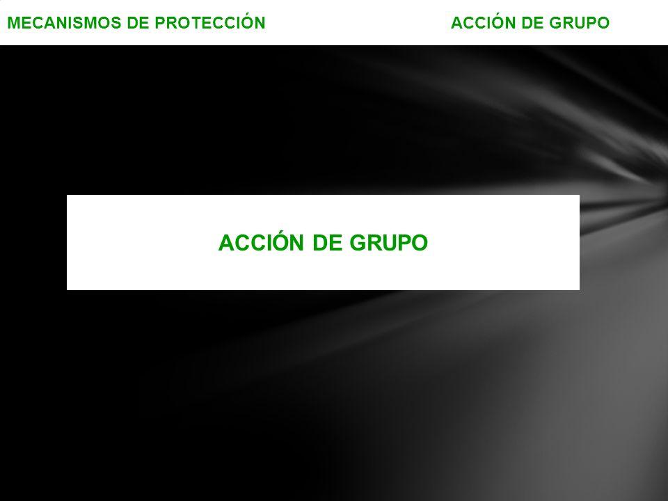 MECANISMOS DE PROTECCIÓN ACCIÓN DE GRUPO