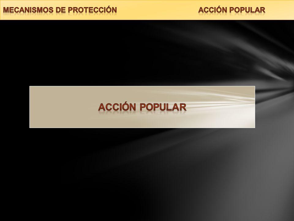 MECANISMOS DE PROTECCIÓN ACCIÓN POPULAR