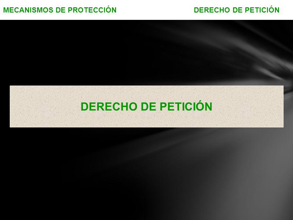 MECANISMOS DE PROTECCIÓN DERECHO DE PETICIÓN