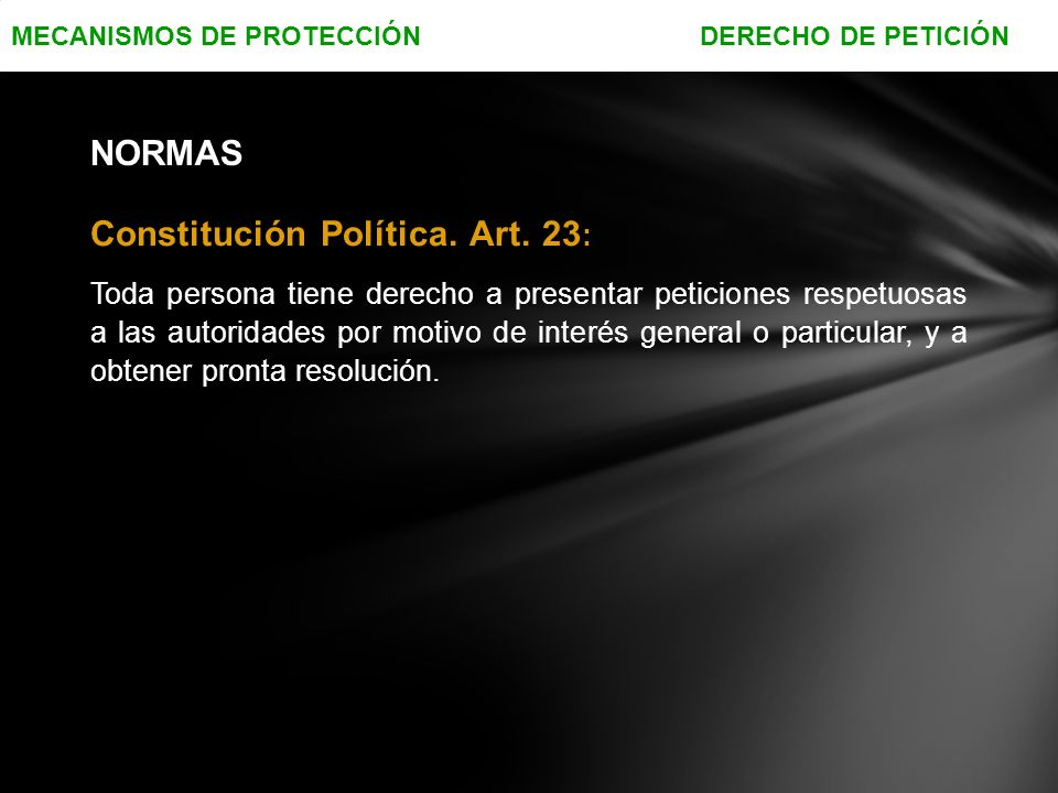 Constitución Política. Art. 23: