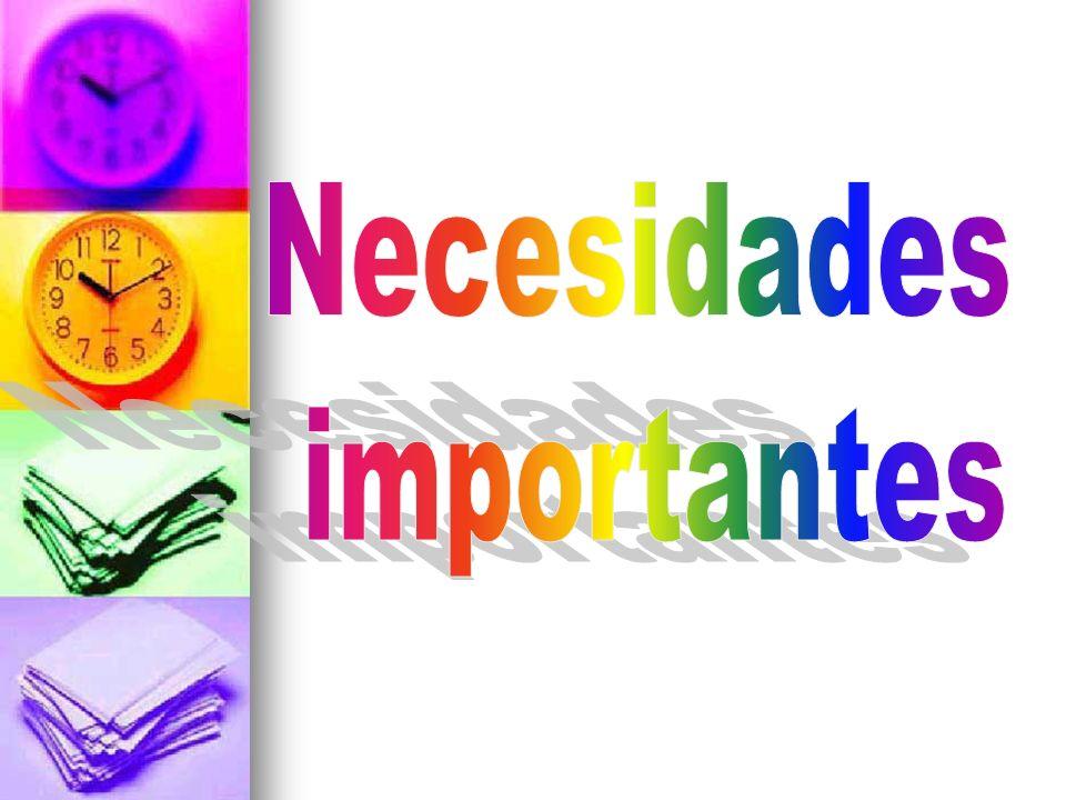 Necesidades importantes