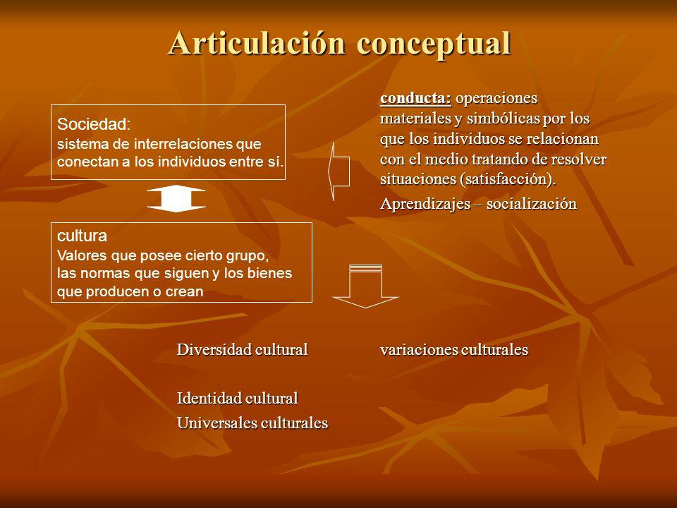Articulación conceptual