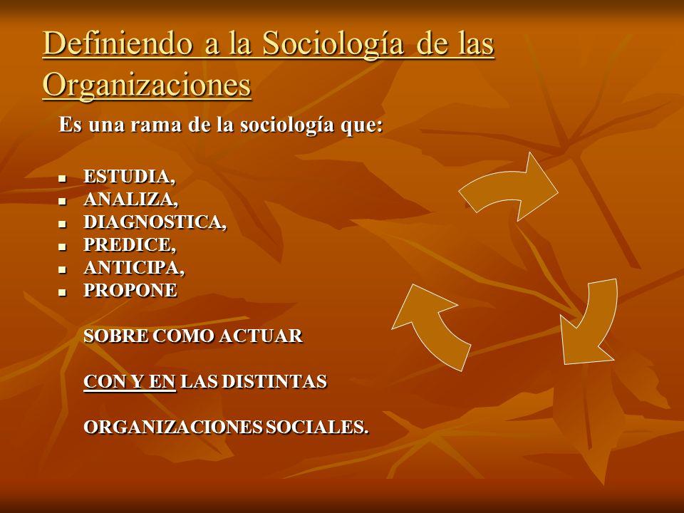 Definiendo a la Sociología de las Organizaciones