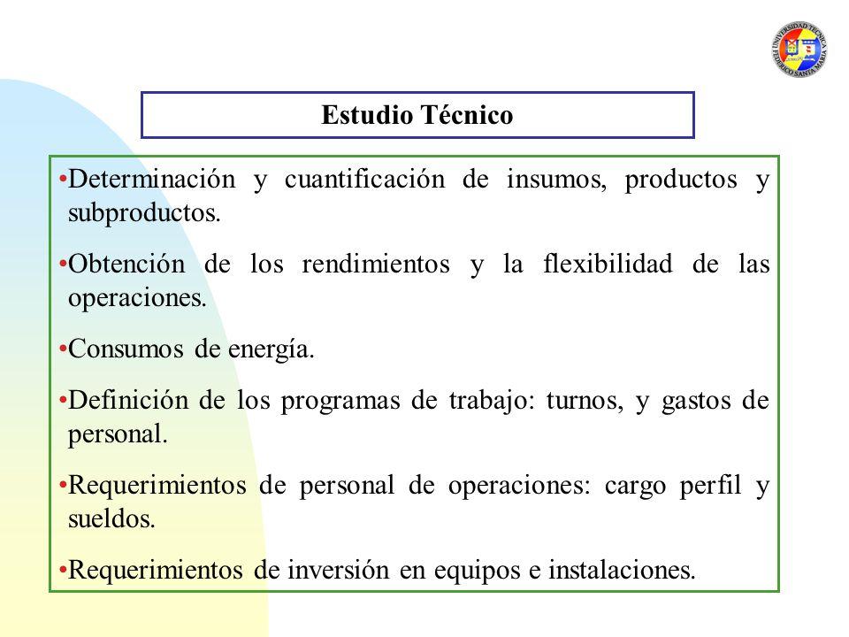 Estudio Técnico Determinación y cuantificación de insumos, productos y subproductos.