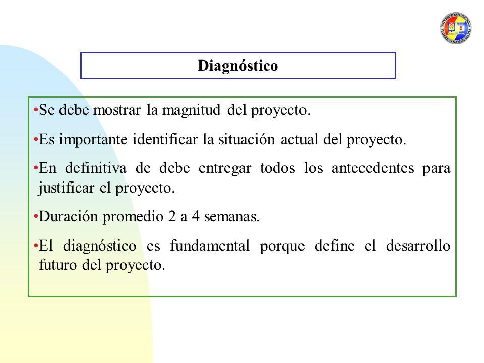 Diagnóstico Se debe mostrar la magnitud del proyecto. Es importante identificar la situación actual del proyecto.