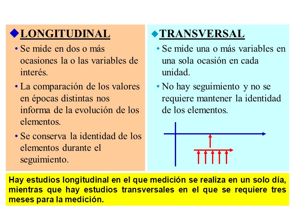 LONGITUDINAL TRANSVERSAL