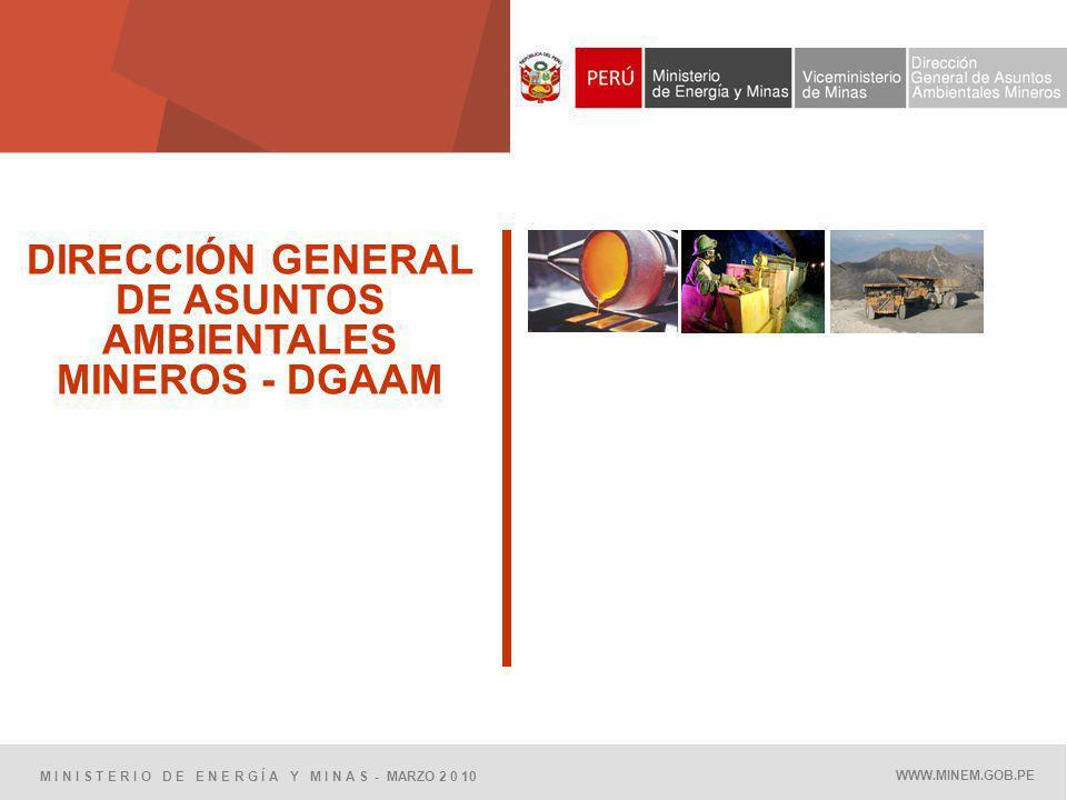 DIRECCIÓN GENERAL DE ASUNTOS AMBIENTALES MINEROS - DGAAM