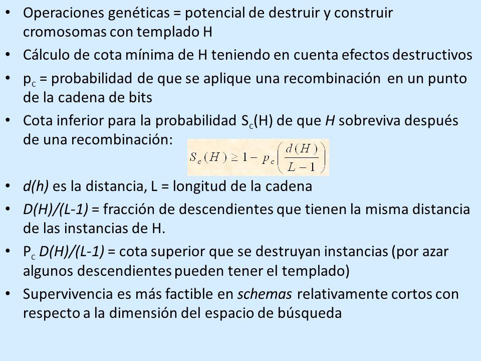 Operaciones genéticas = potencial de destruir y construir cromosomas con templado H