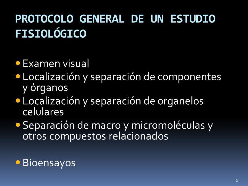 PROTOCOLO GENERAL DE UN ESTUDIO FISIOLÓGICO