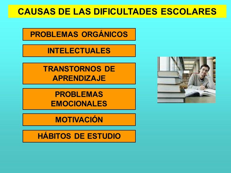 CAUSAS DE LAS DIFICULTADES ESCOLARES