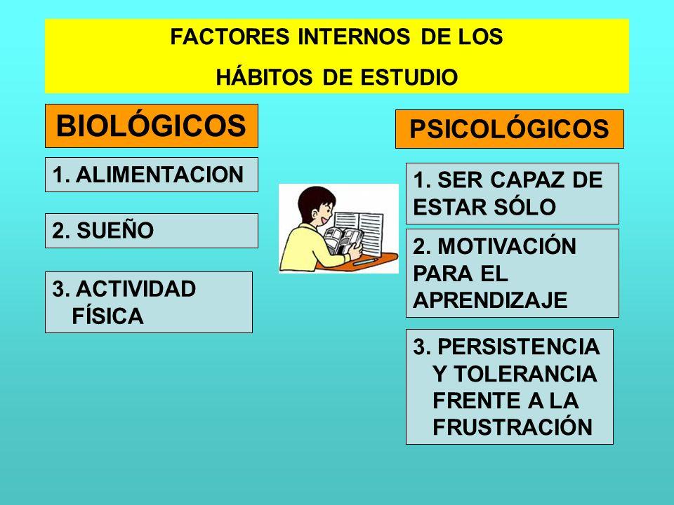 FACTORES INTERNOS DE LOS