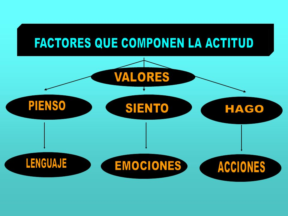 FACTORES QUE COMPONEN LA ACTITUD