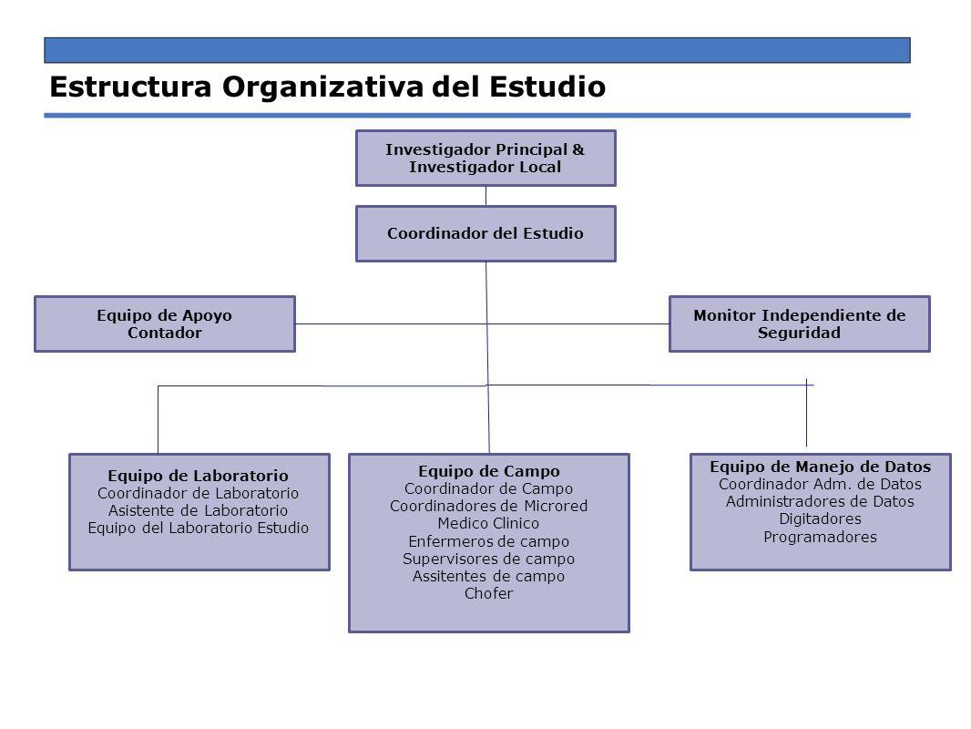 Estructura Organizativa del Estudio