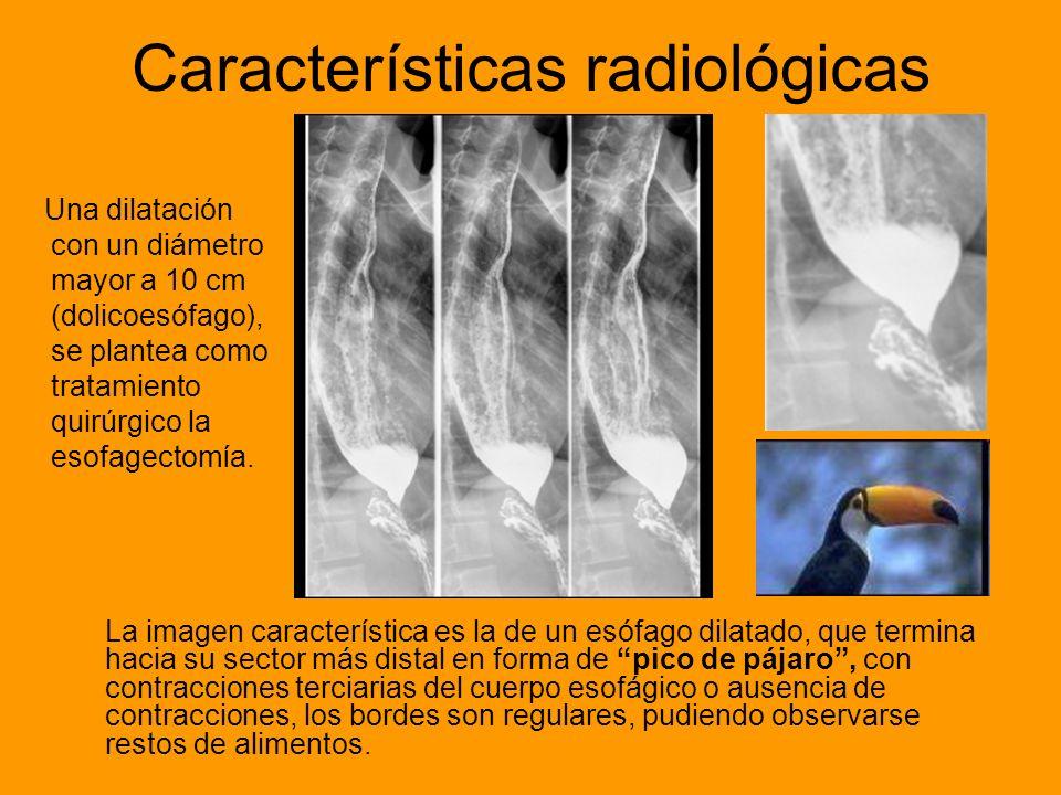 Características radiológicas