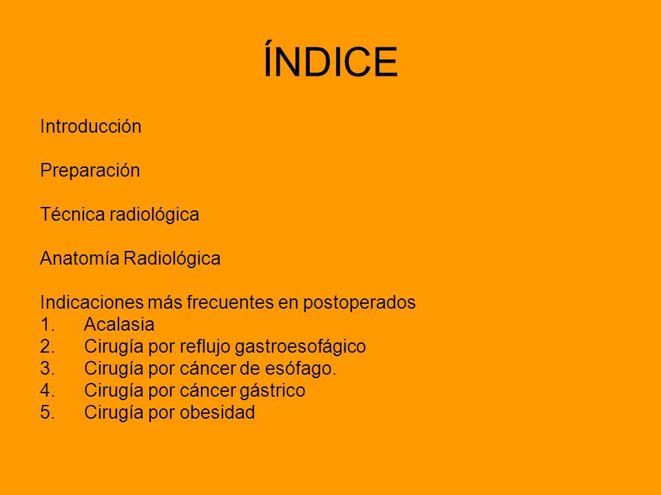 ÍNDICE Introducción Preparación Técnica radiológica