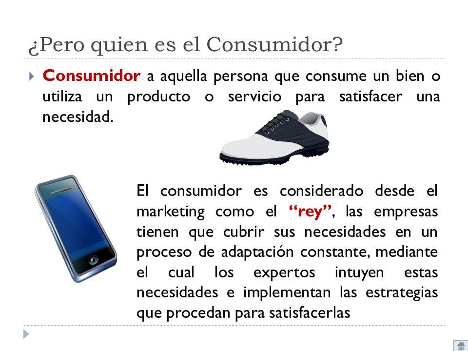 ¿Pero quien es el Consumidor