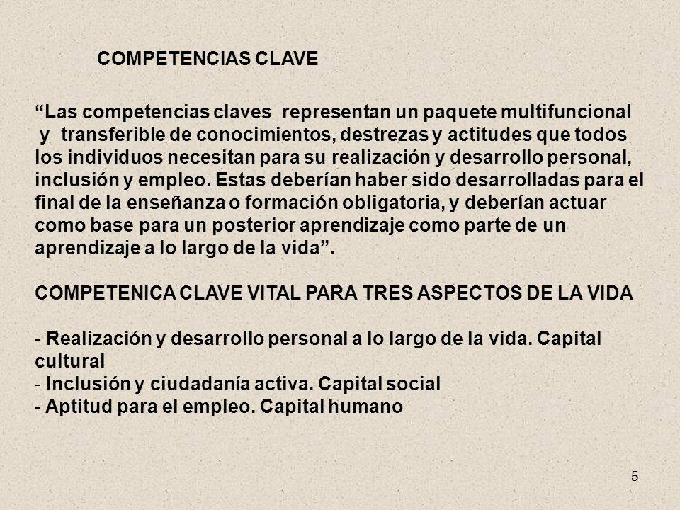 COMPETENCIAS CLAVE Las competencias claves representan un paquete multifuncional.