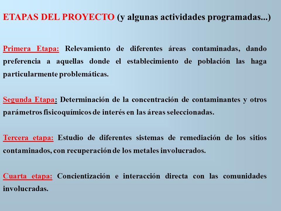ETAPAS DEL PROYECTO (y algunas actividades programadas...)