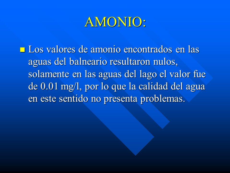 AMONIO: