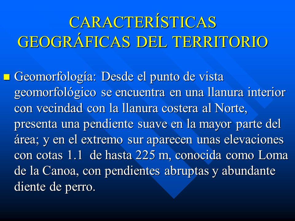CARACTERÍSTICAS GEOGRÁFICAS DEL TERRITORIO