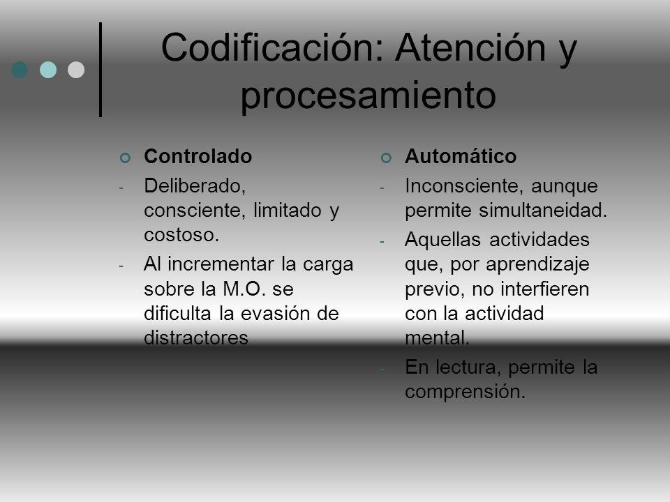 Codificación: Atención y procesamiento