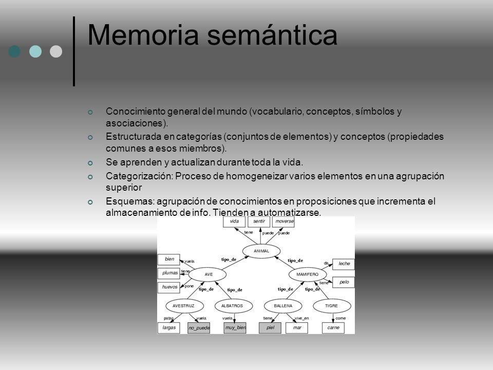 Memoria semántica Conocimiento general del mundo (vocabulario, conceptos, símbolos y asociaciones).