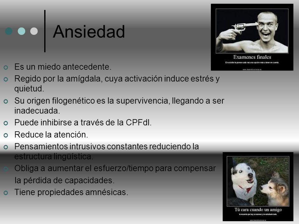 Ansiedad Es un miedo antecedente.